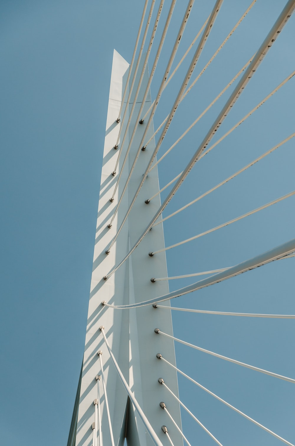 low angle photography of cable bridge