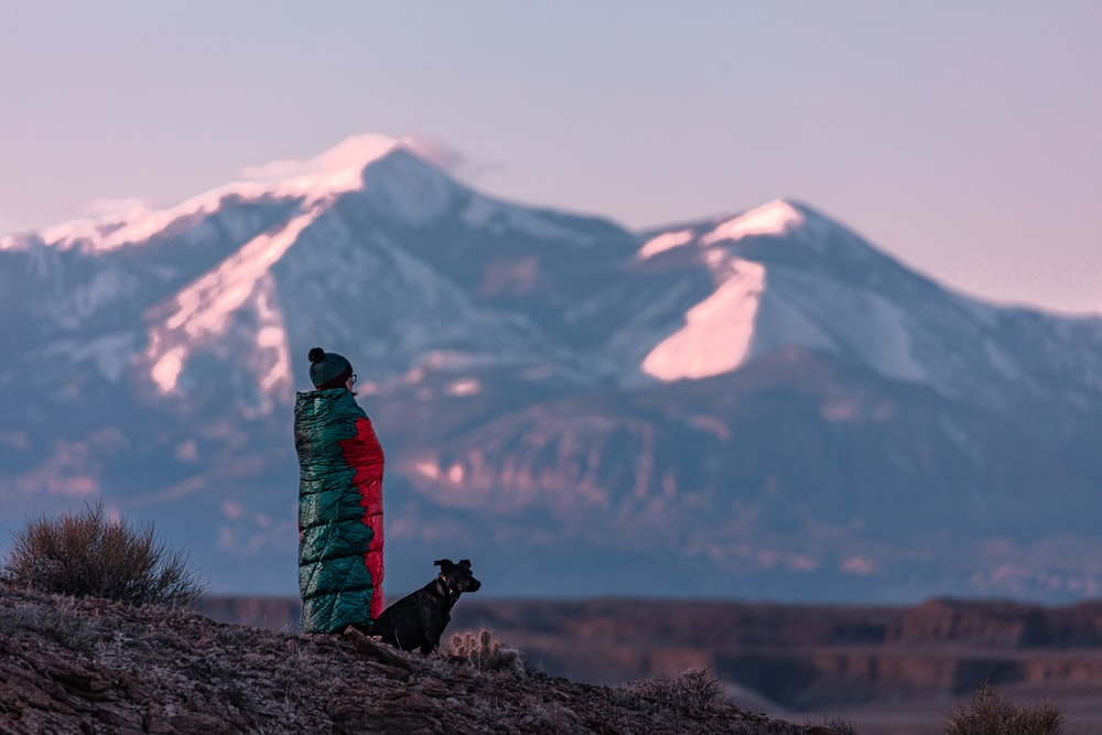 man and dog standing near black and white mountain view