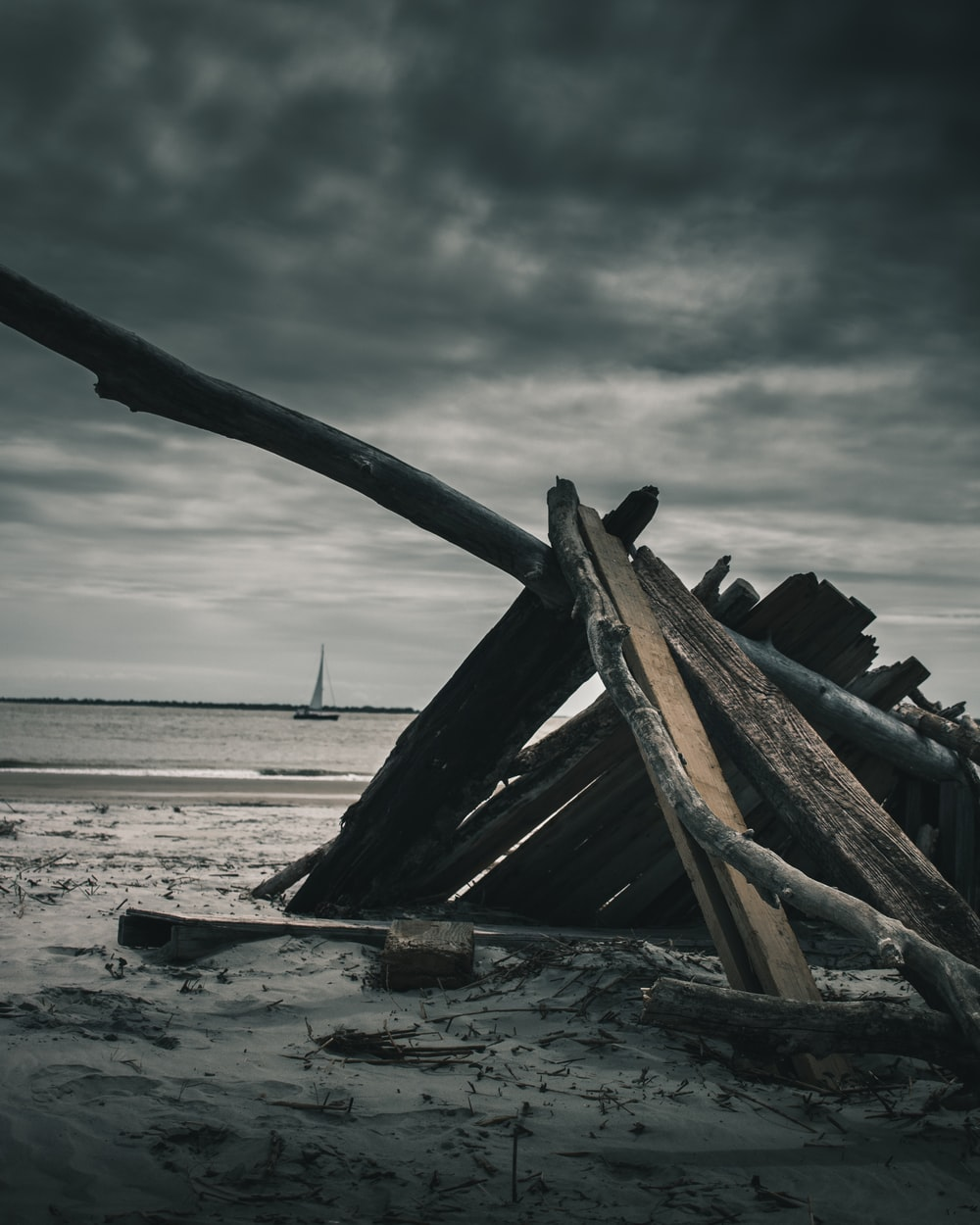 brown wood scraps by the sea during daytime