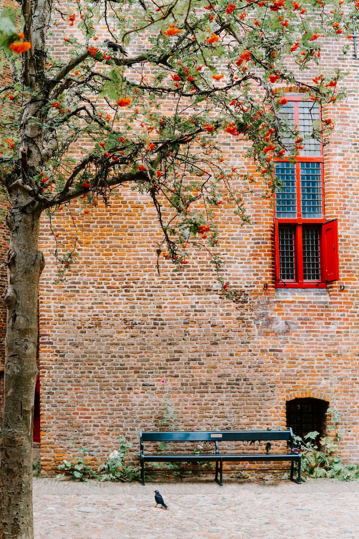 black bench beside brick wall