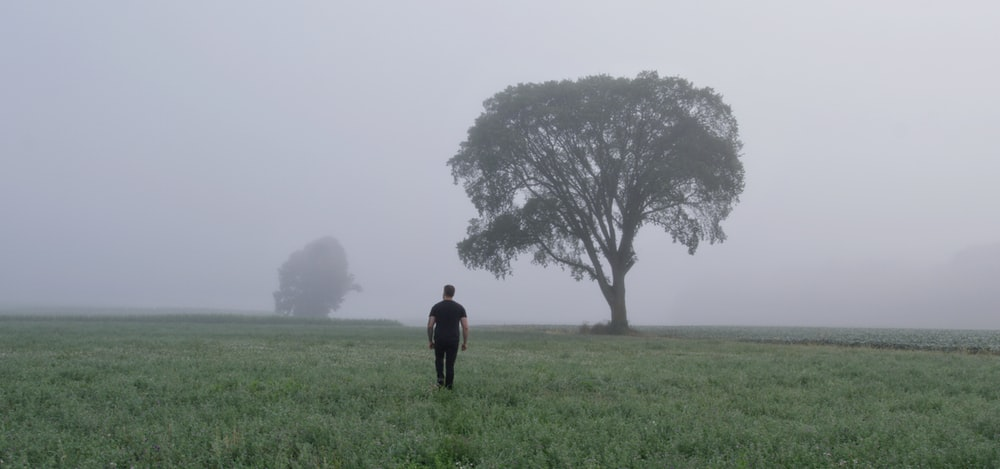 man standing on grass field near tree