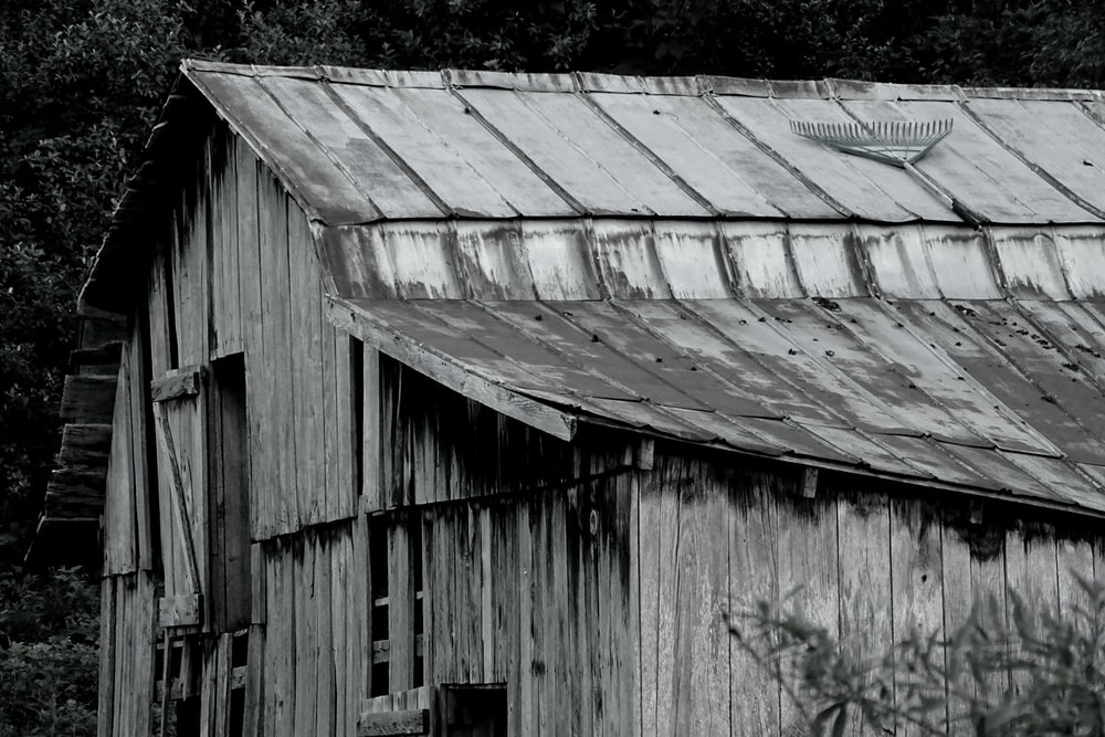 grayscale photogarphy of shed