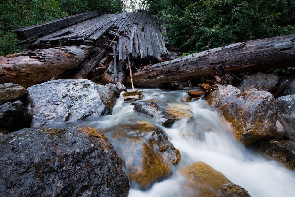 broken brown wooden structure stack on river between green trees
