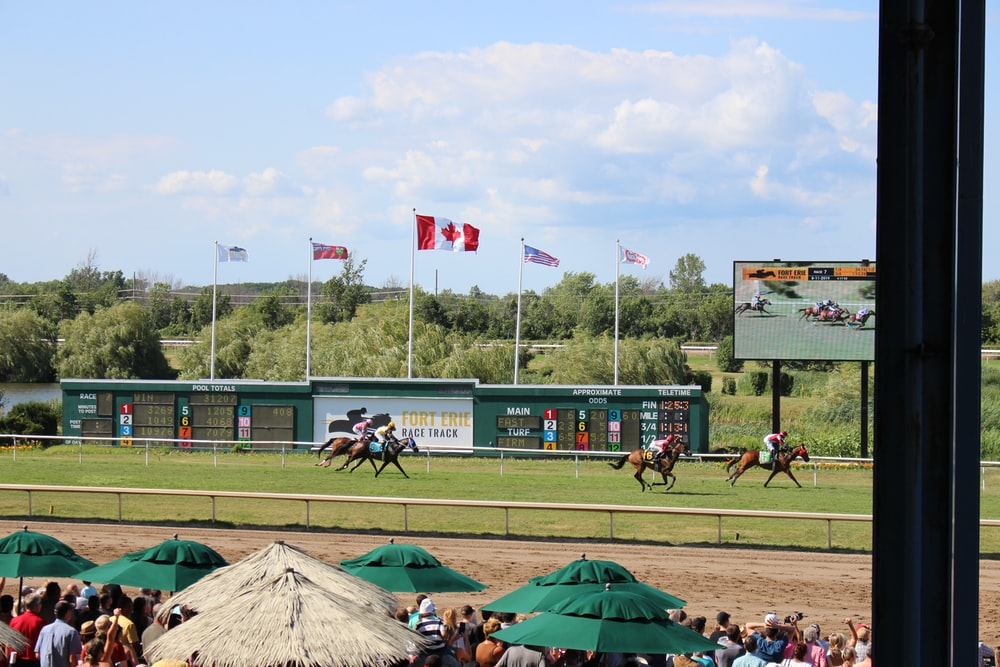 time-lapse photography of horses in a race track