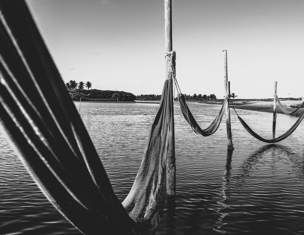 nets on body of water