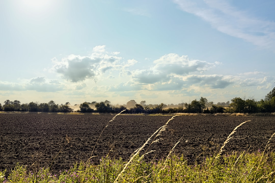 On the plain Suffolk countryside