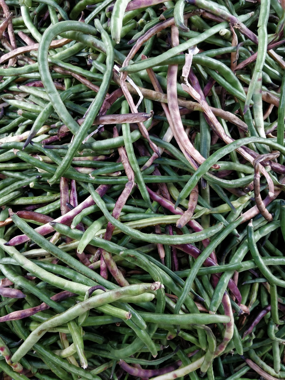 green and purple string beans