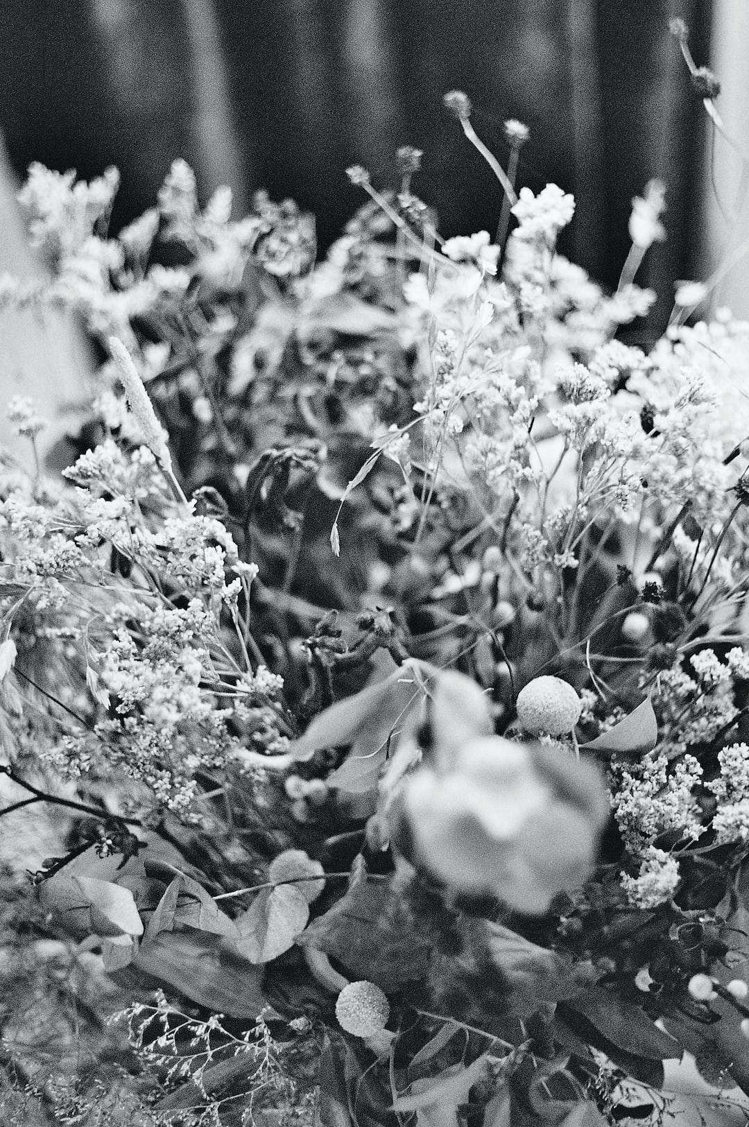 Flower bouquet. Tallinn, Estonia 2019