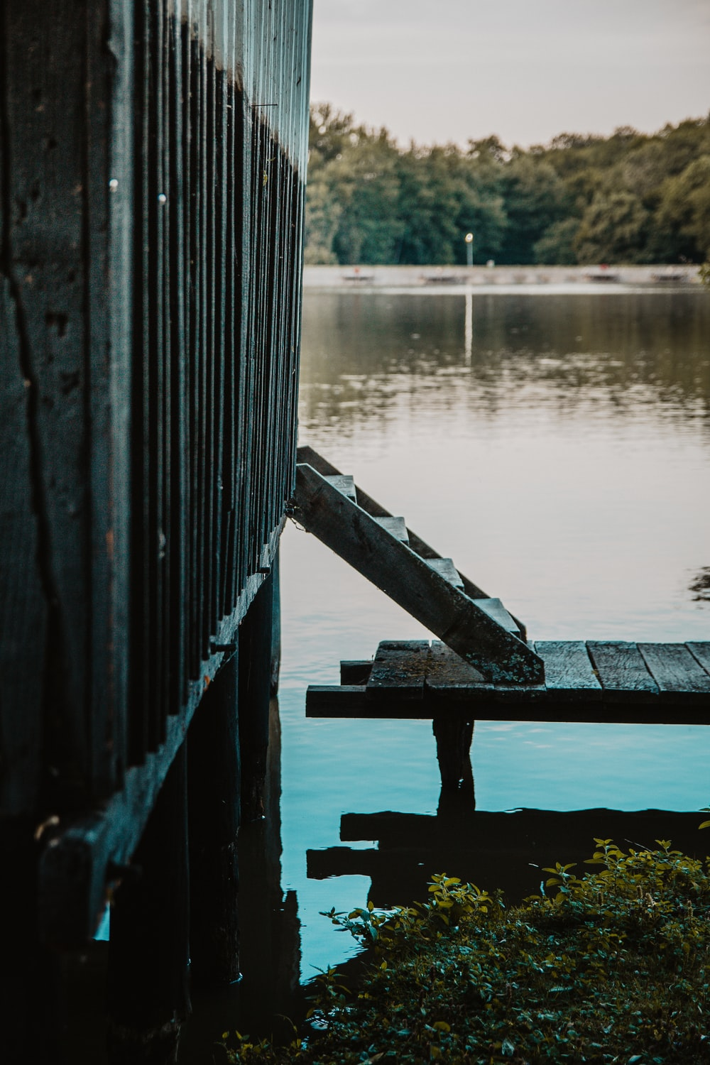 gray wooden dock beside body of water close-up photography