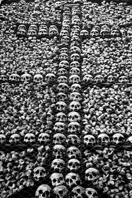 gray skull lot