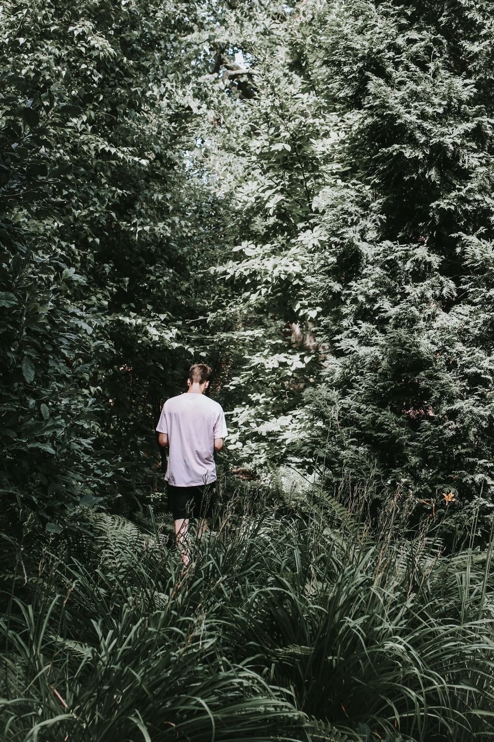 man wearing white shirt in forest