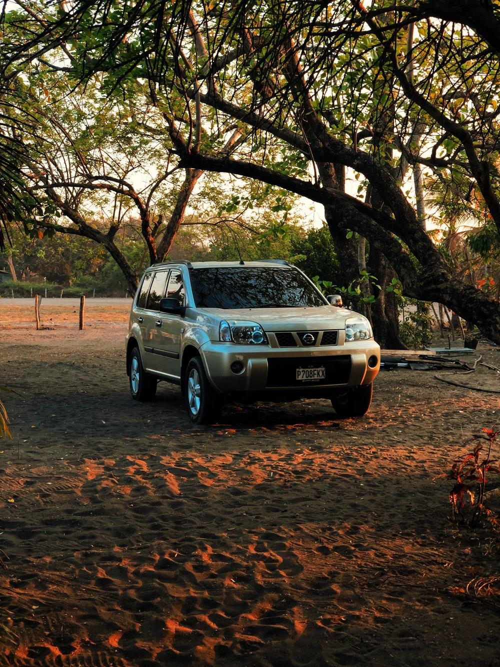 gray SUV parked on sand besides trees
