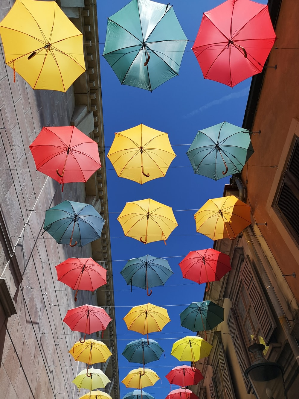 assorted-colored umbrellas hanging on strings during daytime