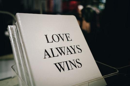 love always wins book in box