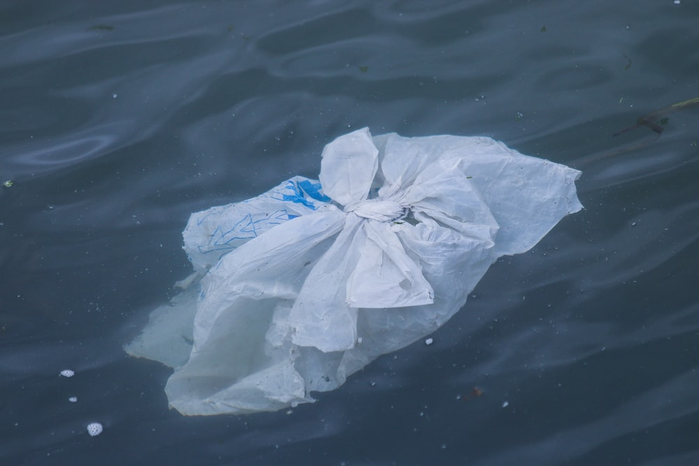 white plastic bag on water