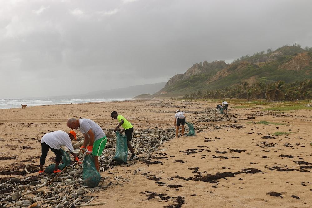 people picking garbage near beach