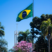 green and yellow flag on pole