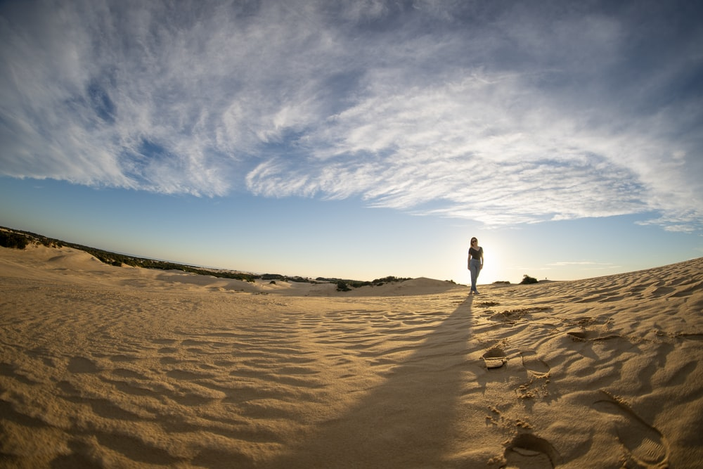 person standing on desert under blue and white skies