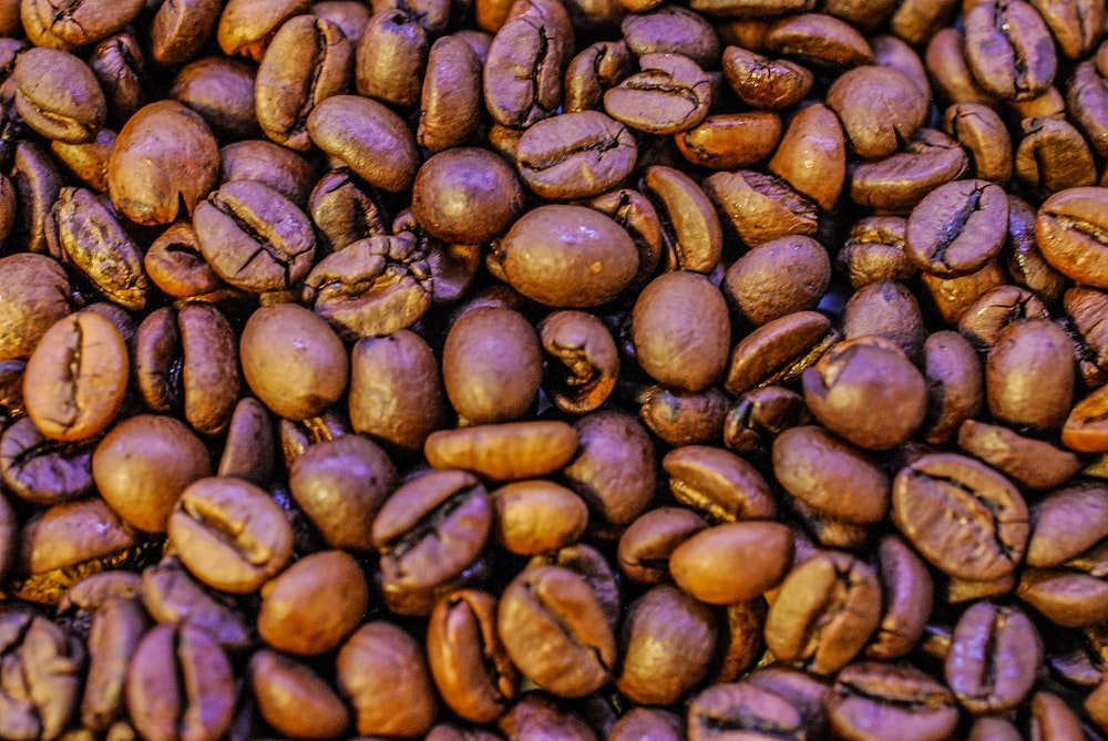 close-up photography brown coffee beans