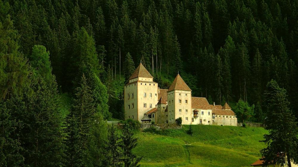 beige castle near trees