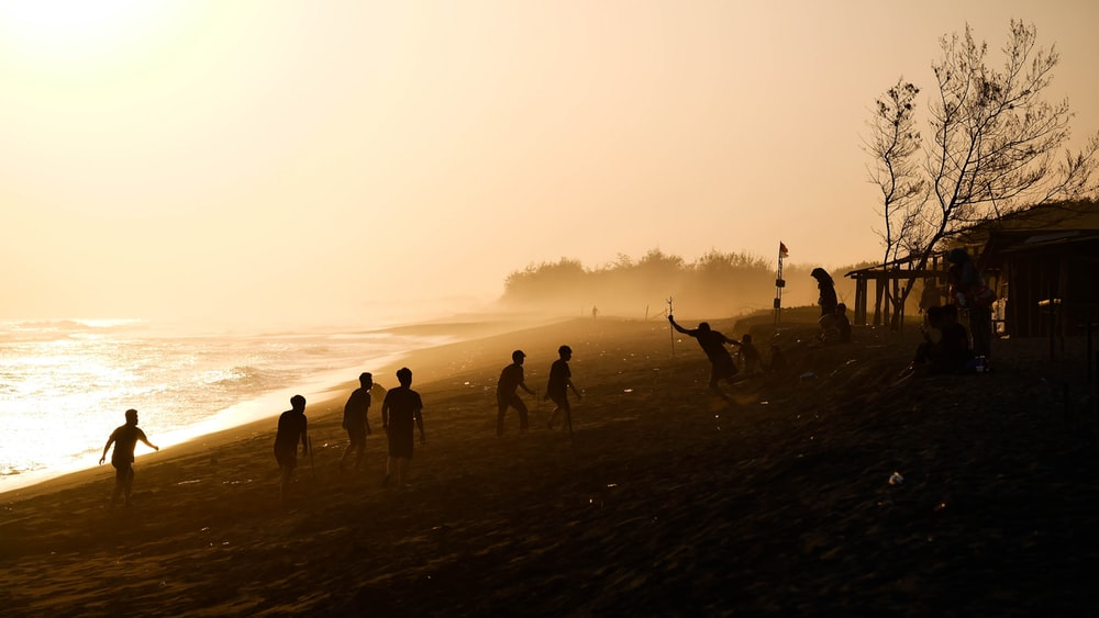 men playing in sea shore during golden hour