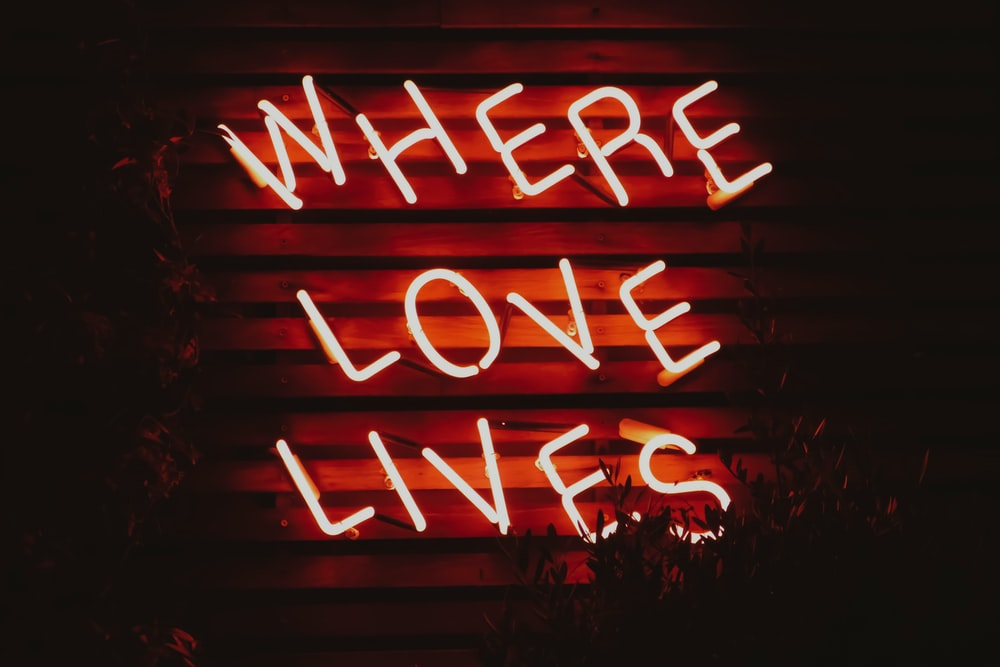 where love lives neon signage turned on