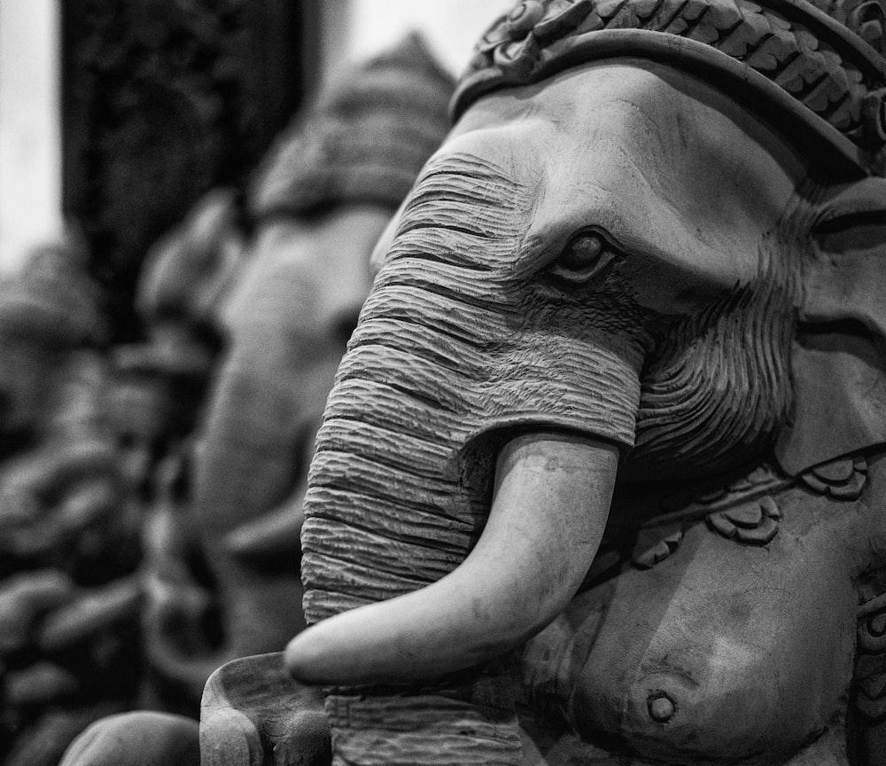 grayscale photo of elephant