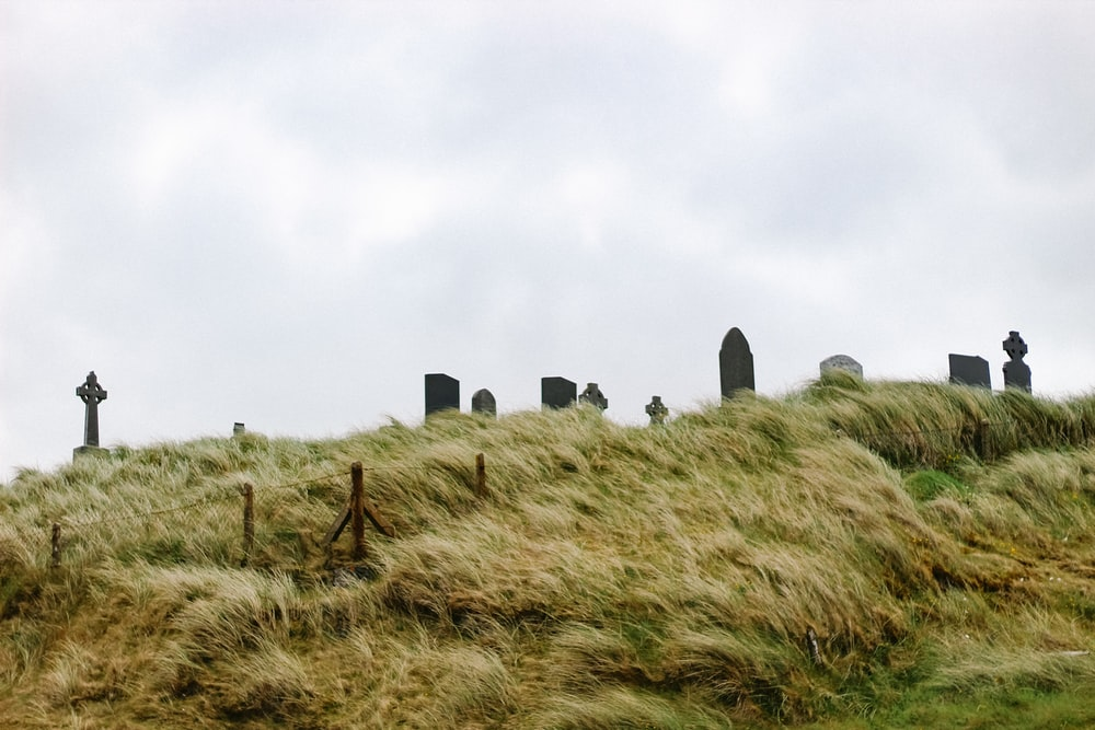 tombstones on hill