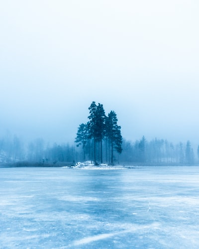 Frozen lake, frozen world.
