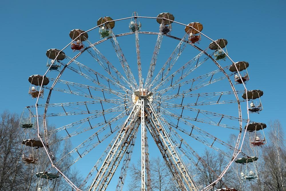 white and brown Ferris wheel photo