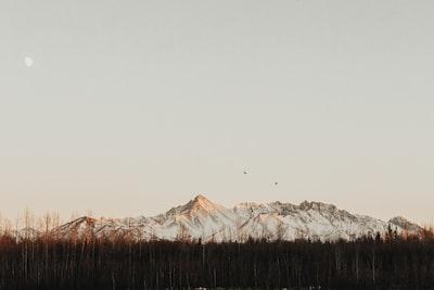 Alaska Golden Hour.