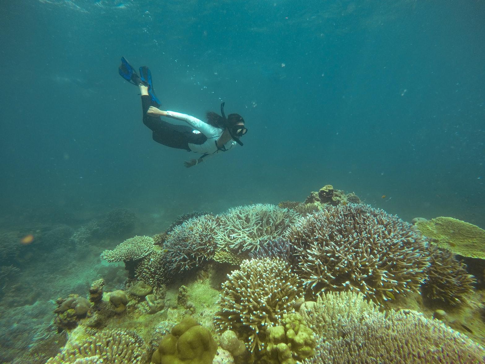 Scuba Diving- top adventure activity in Thailand.