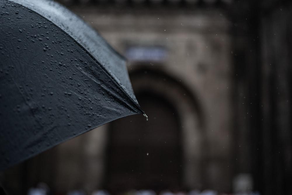 photo of black umbrella