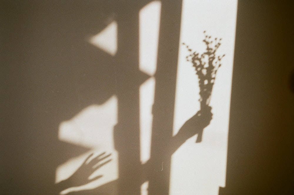 shadow of person's hand holding flowers