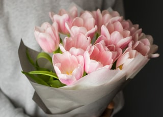 pink tulips buoquet
