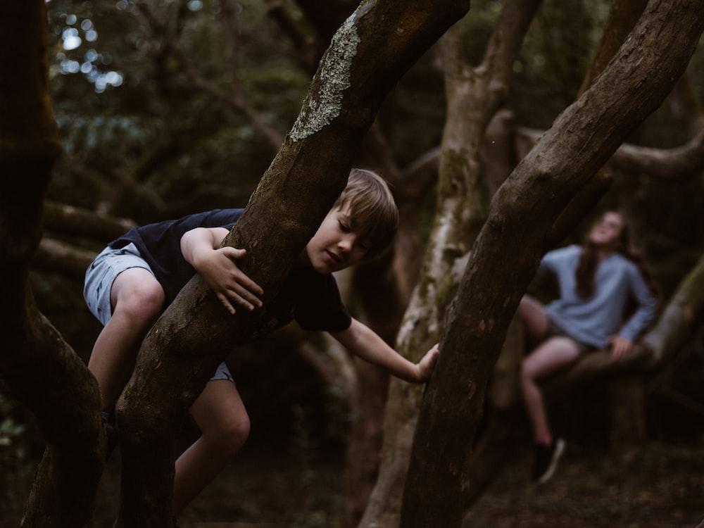 boy climbing up on tree