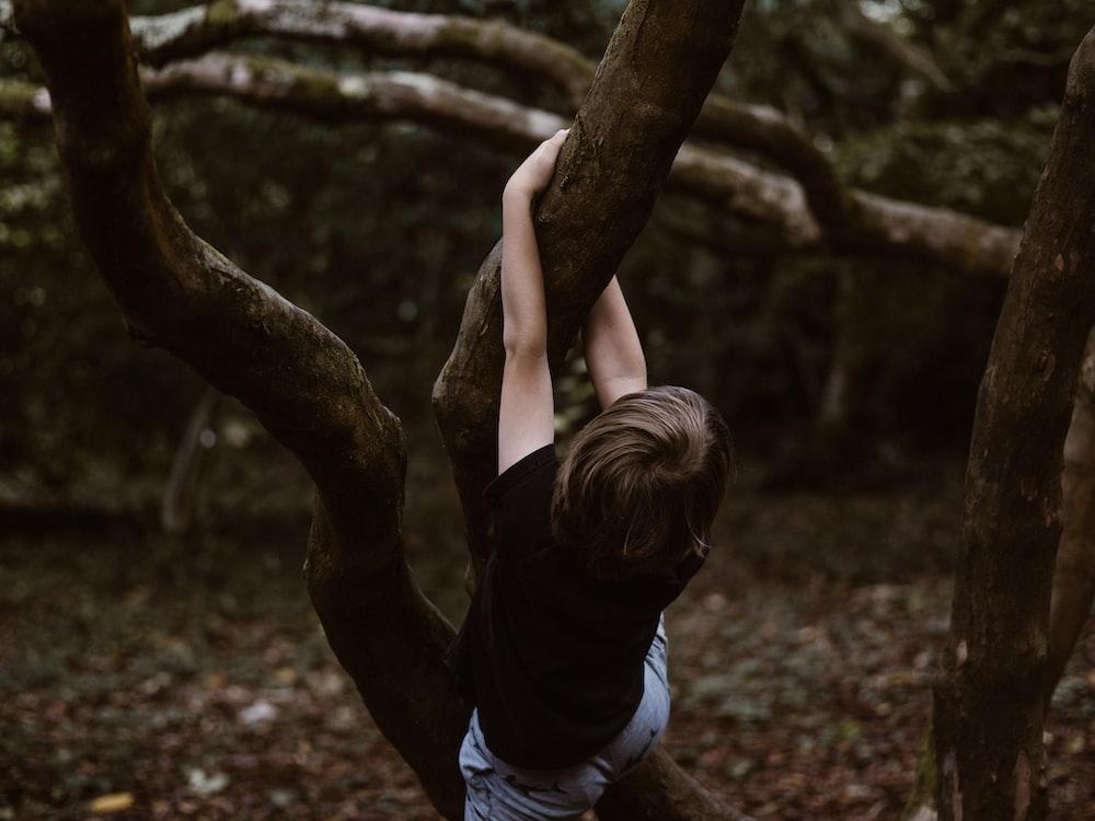 toddler hanging on tree