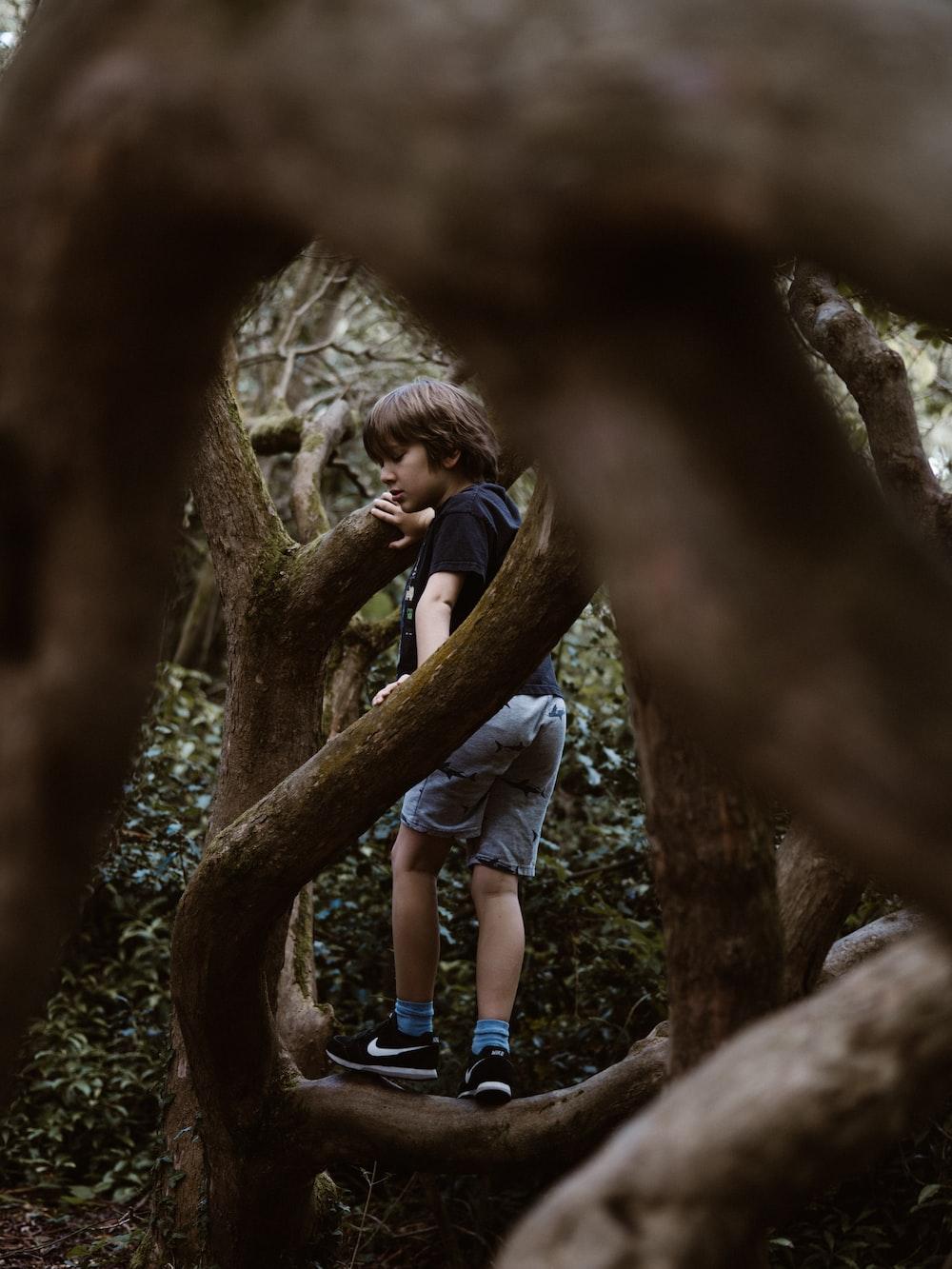 boy standing on tree branch
