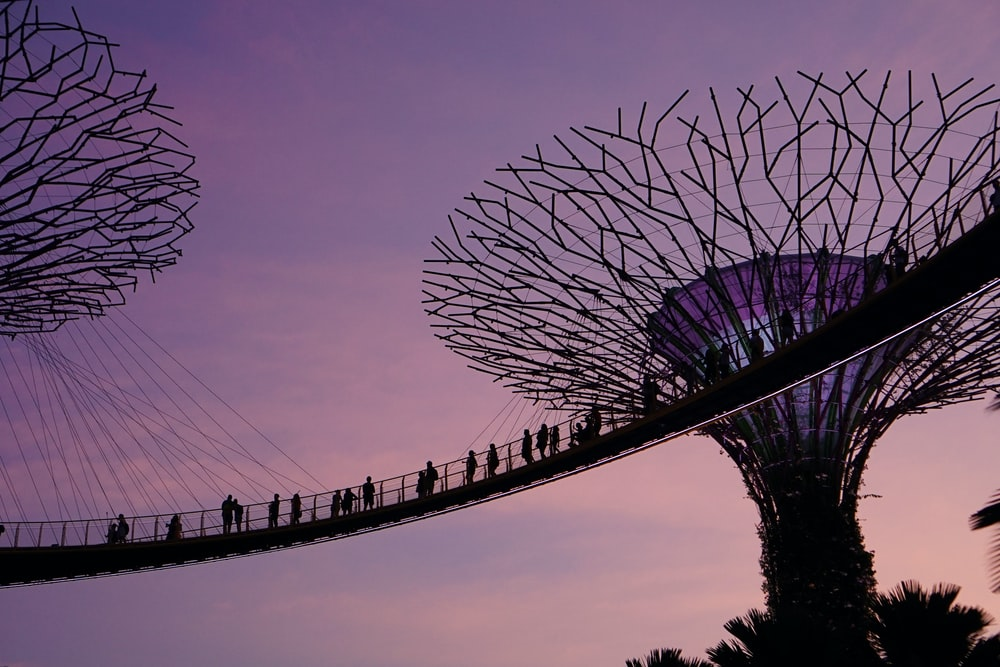 Marina City Park, Singapore