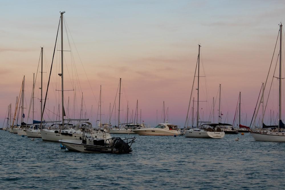 white sail boats