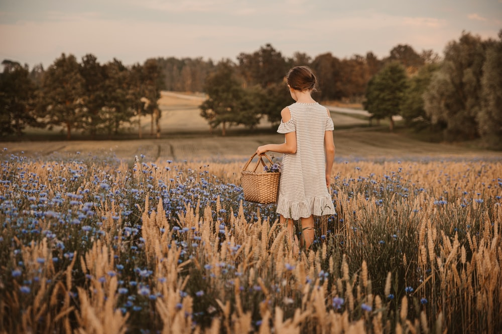 photography of girl standing near flower field during daytime