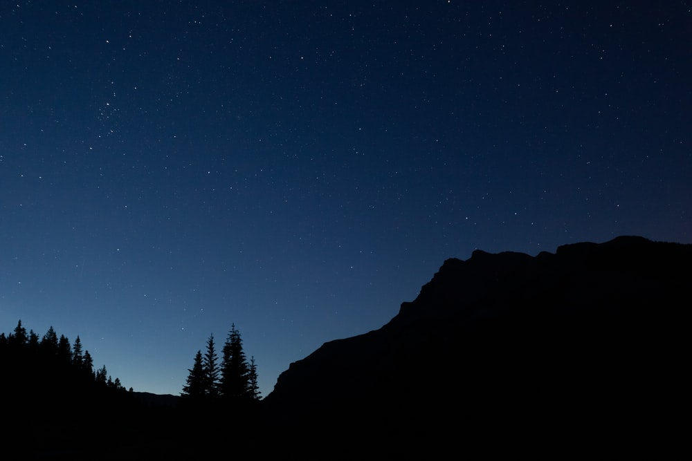 silhouette of mountain and trees at night