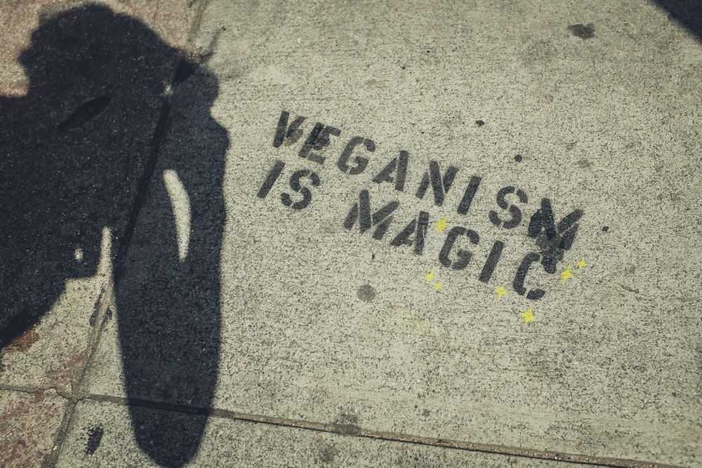 Veganism is Magic text