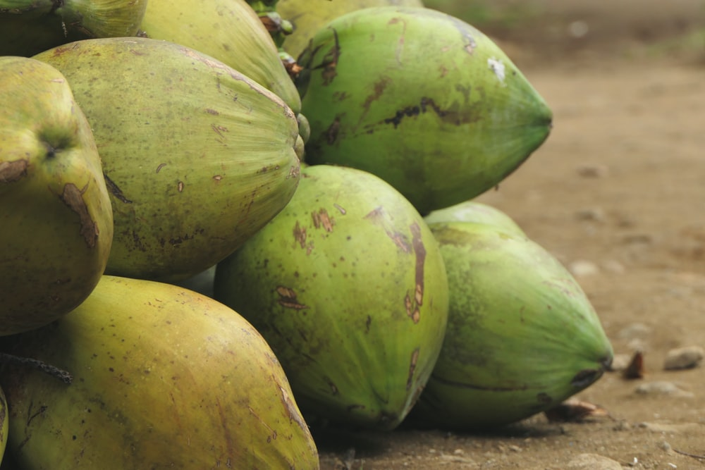 green coconut fruits
