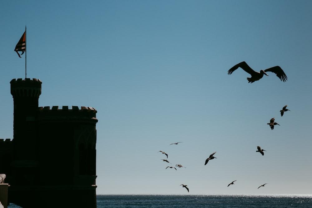 castle photography