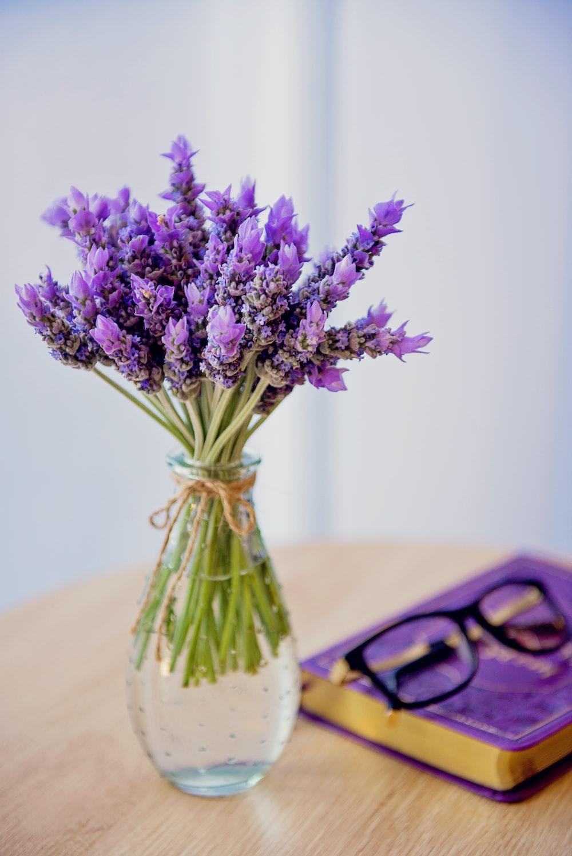 purple petaled flowers with vase