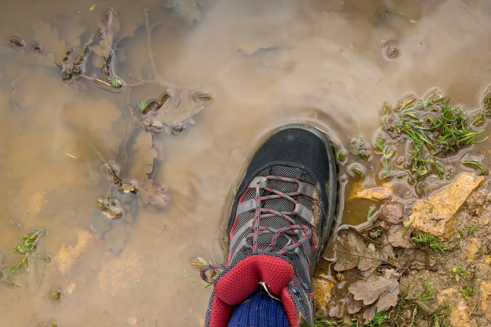 person wearing black shoe stepping on wet ground