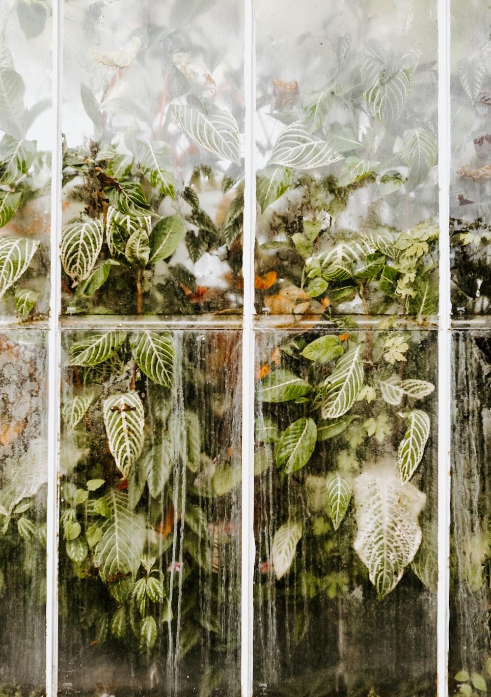 plans behind glass window