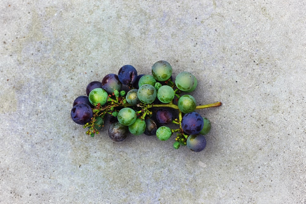 round purple and green fruit