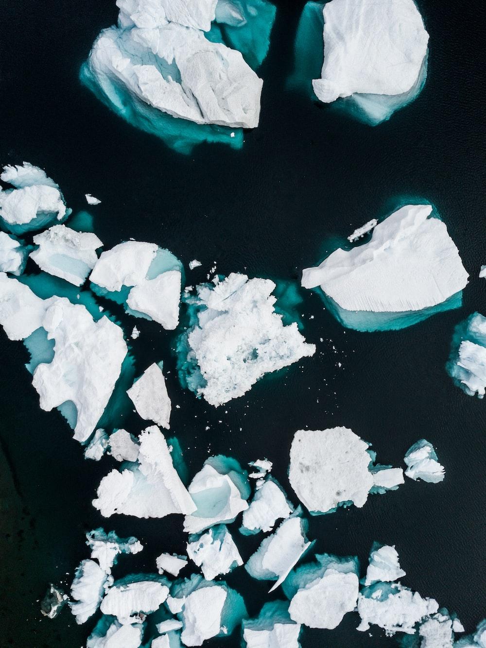 ice bergs display